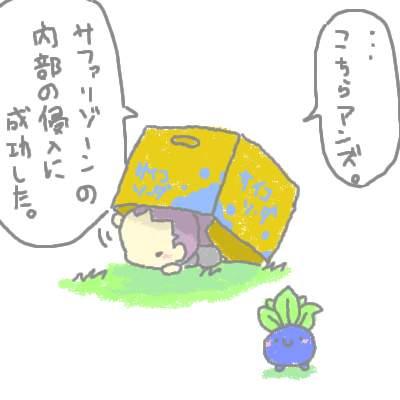 seki_47.jpg