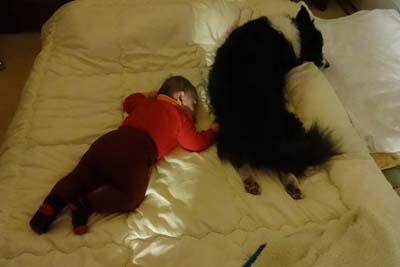 シンクロ昼寝のお二人さん