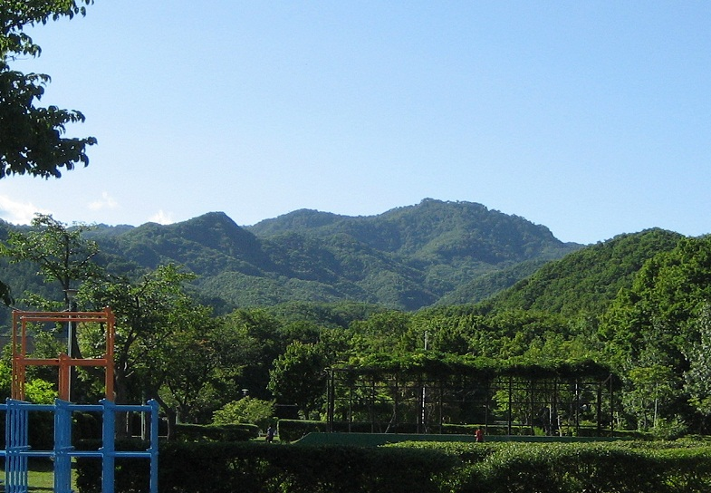 20120807_jugoshima_yama.jpg