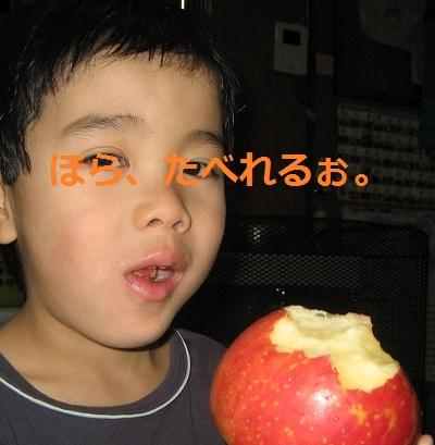 20121206_ringo_01.jpg