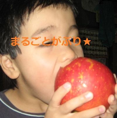 20121206_ringo_02.jpg