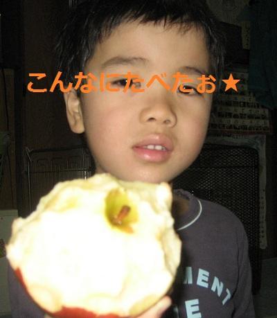 20121206_ringo_03.jpg