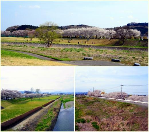 naganogawa1.jpg