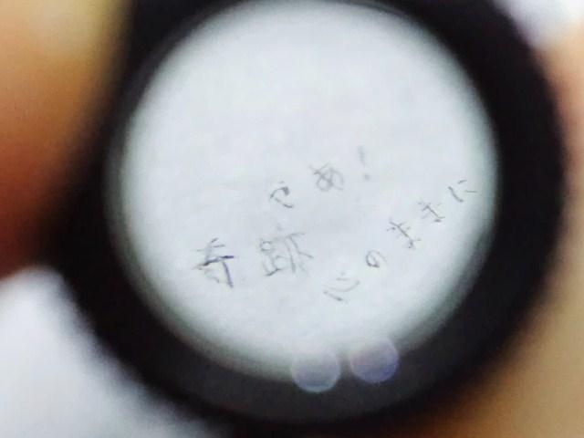 2012_1002_041216-CA3H3017.jpg