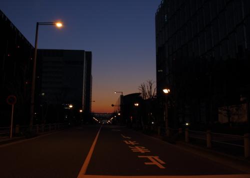 IMG_5555-b.jpg