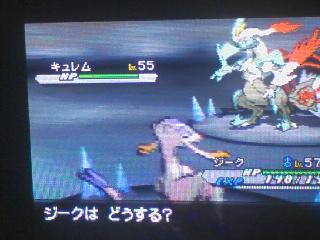 pokemon_w2_whitekyurem.jpg