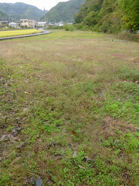 植え付け予定の畑20121018