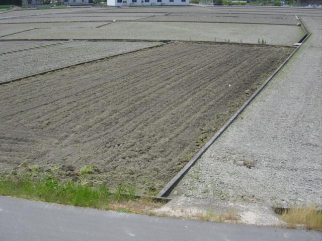 耕作放棄地その2耕す