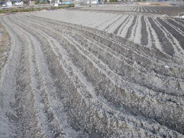 田んぼの畝たて20121227