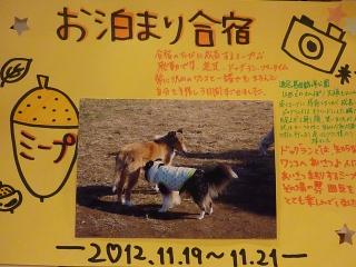 お泊り合宿2012年11月
