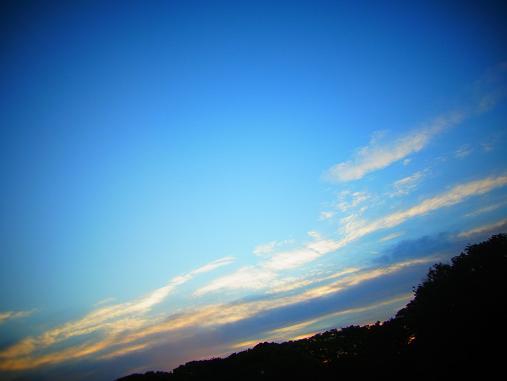 2012.5.11分 GW中の写真おでかけ②午後 9