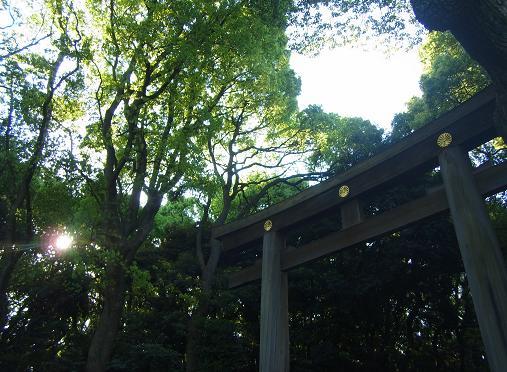 2012.5.11分 GW中の写真おでかけ②午後 3