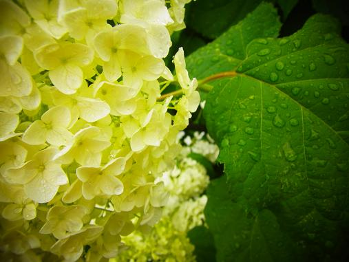 2012.6.17 ソッコーで写真ペタペタw 5