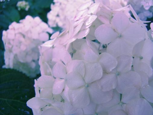 2012.6.17 ソッコーで写真ペタペタw 2