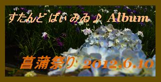 アルバム用 菖蒲祭り 2012.6.10