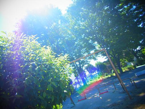 2012.9.7分 写真 最近の散歩とか 5