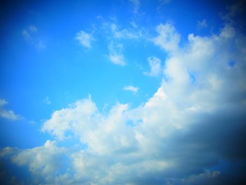 2012.9.7分 写真 最近の散歩とか 4