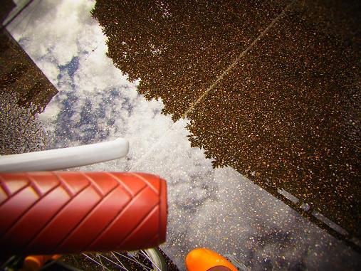 2012.9.11分 お散歩写真、雨上がり~ 1