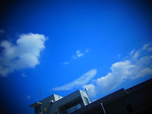 2012.9.21分 リザードン雲+ハニトー 3