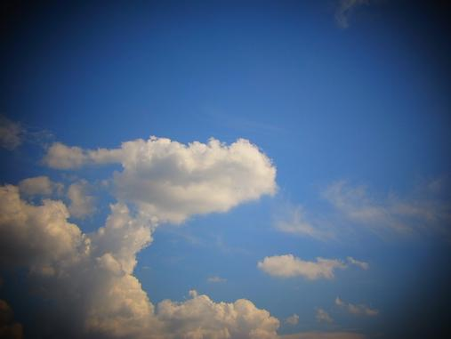 2012.9.21分 リザードン雲+ハニトー 4