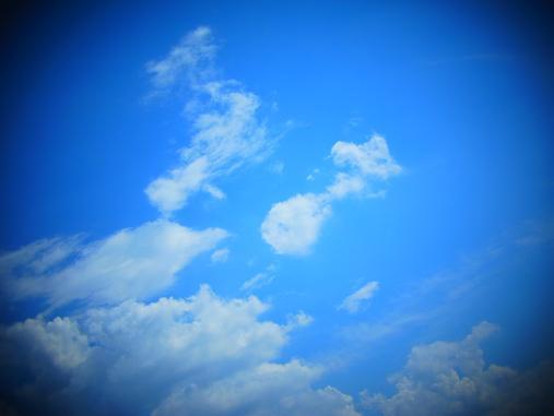 2012.9.22 時間なくてオマケ写真; 6