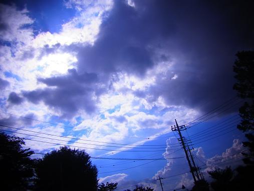 2012.9.24分 シマリスくん 3