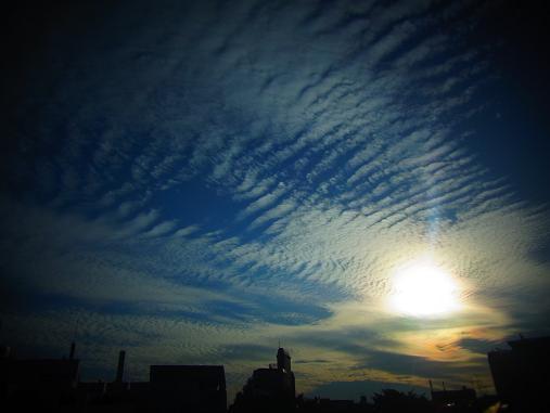 2012.10.13 原宿ぶらぶらw 4