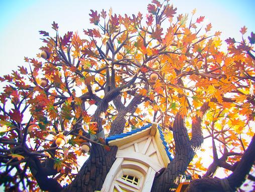 2012.11.1分 Dハロウィン詳細日記 裏13