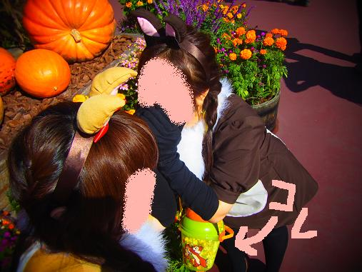 2012.11.1分 Dハロウィン詳細日記 裏10