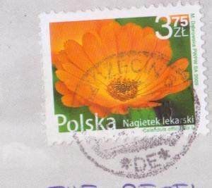 011-_convert_20121106171658.jpg