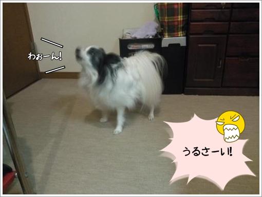 004_convert_20121220123202.jpg