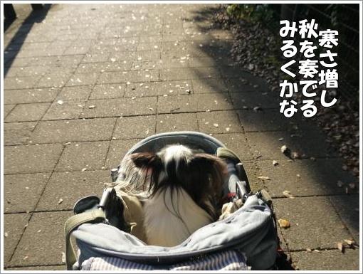 006_convert_20121022121354.jpg