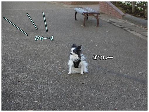 006_convert_20121211122544.jpg