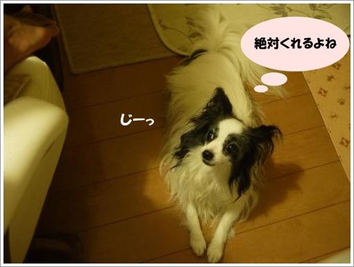 009_convert_20120910122042.jpg