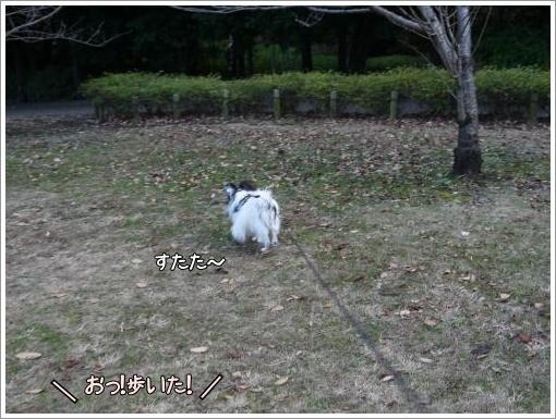 009_convert_20121211123159.jpg