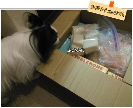 009_convert_20121220123453_20121220140706.jpg