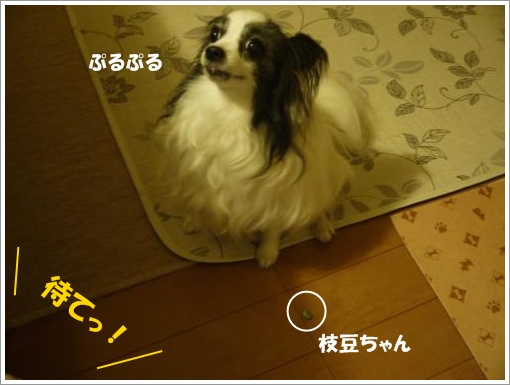 011_convert_20120910122211.jpg