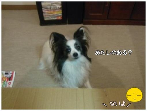 011_convert_20121220125449.jpg
