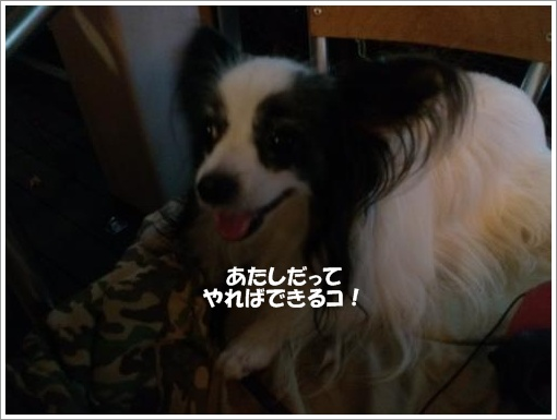 012_convert_20120921095639.jpg