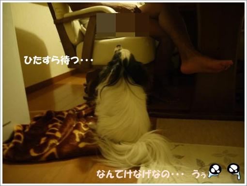 018_convert_20120910122442.jpg