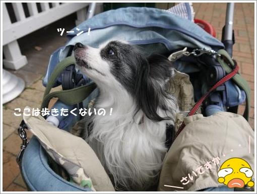 021_convert_20121015121033.jpg