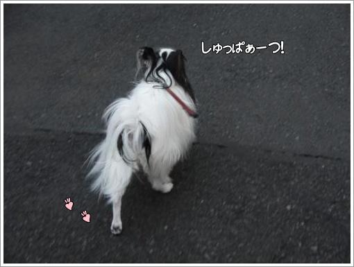 021_convert_20121115120035.jpg