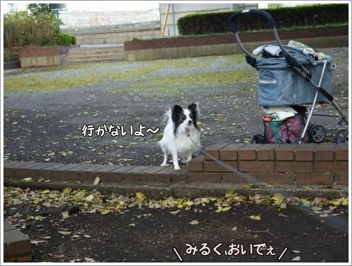 021_convert_20121127123441.jpg