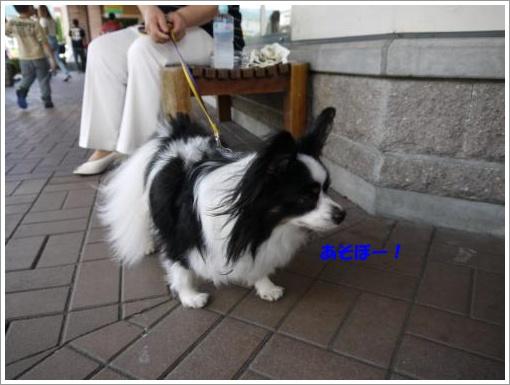 022_convert_20121001122047.jpg