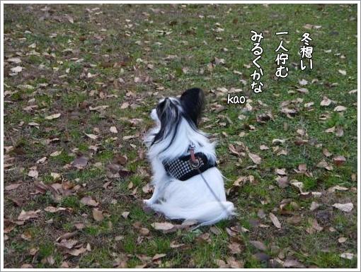 026_convert_20121213122630.jpg