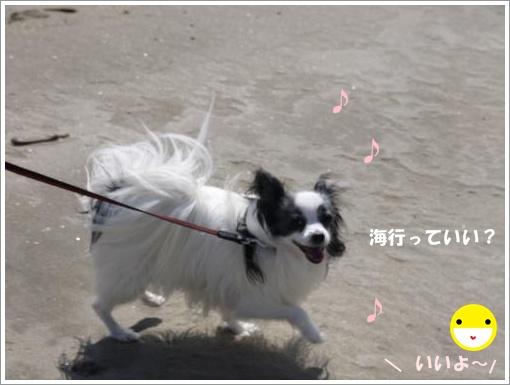 056_convert_20121010123749.jpg