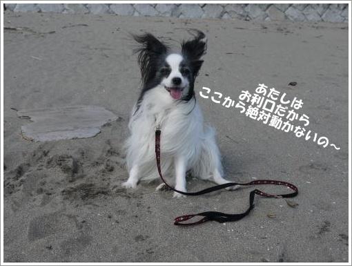 066_convert_20121010124823.jpg