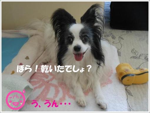 075_convert_20120730094222.jpg