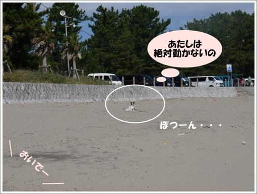 075_convert_20121010124543.jpg