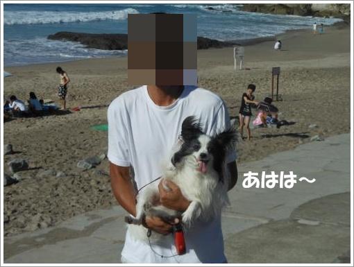 094_convert_20120808103913.jpg